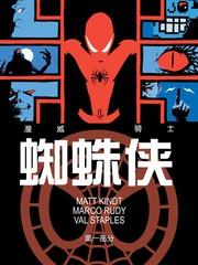 漫威骑士:蜘蛛侠